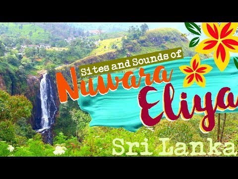 Sights and Sounds of Nuwara Eliya, Sri Lanka!!!! | #seetheworld | Explore With Me!