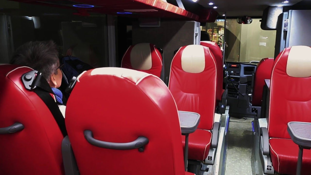 onnibus liput