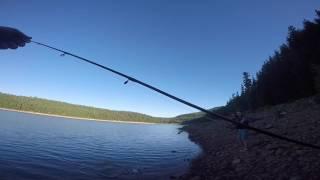 MONSTER!!!!! Oregon Lake Fishing!