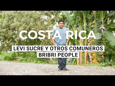 """We are not superior to water or the tree or the forest"" - Levi Sucre - Bribri people"