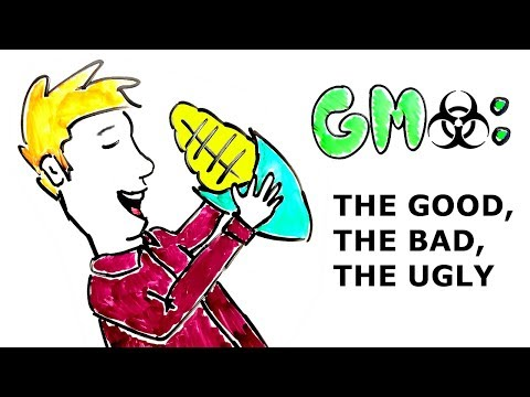 GMO's: The GOOD, BAD, & DOWNRIGHT UGLY