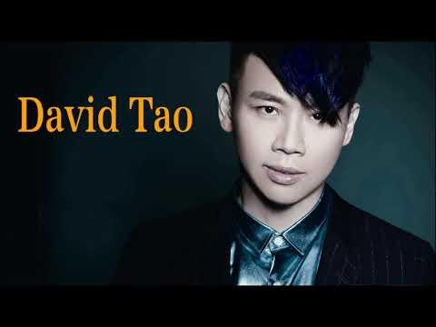 David Tao 精選集 | David Tao  最�年歌曲 Top Songs of 2017 [完全版 Complete]
