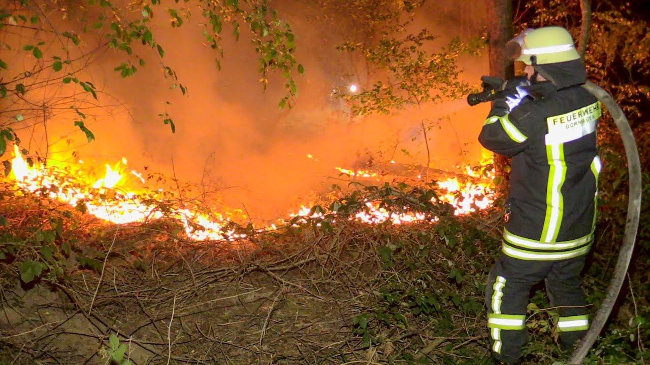 [AUSGEDEHNTER WALDBRAND IN DORMAGEN] - 15.000m² Flächenbrand | Großeinsatz der Feuerwehr -