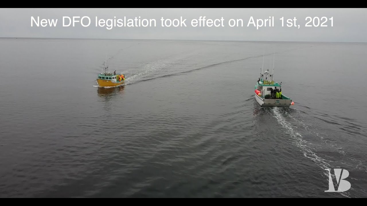 Some ramifications of the new Inshore Fisheries regulations explained and how they may affect you