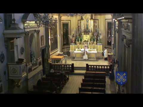 Conmemoración de San Valentín. Presbítero y Mártir (Misa 08:00 Hrs)
