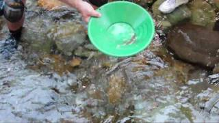 California Gold Panning
