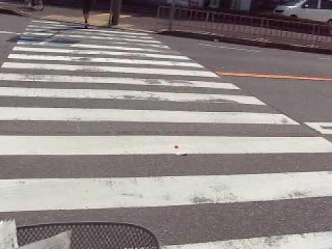 路上露出 もろみえ ヌード 2009年度 大阪 さくら ⑤