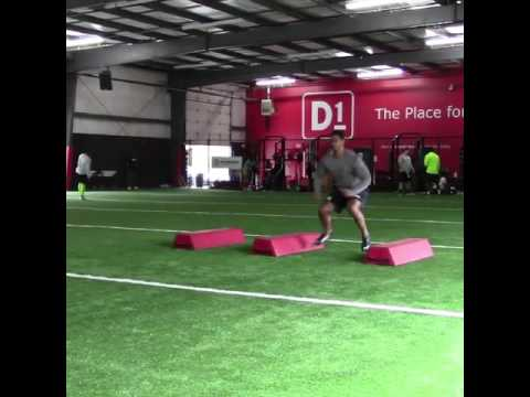 Jason Taylor (NFL/CFL Free Agent)