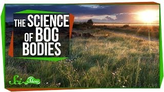 Repeat youtube video Chemistry & Corpses: The Science of Bog Bodies