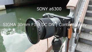 SONY a6300 × SIGMA 30mm F1.4 DC DN (4K Video Test) | α6300 OSAKA City