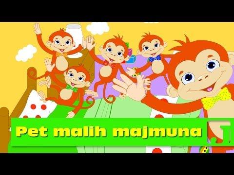 Pet malih majmuna   Dečije pesme   Jaccoled