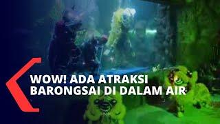 Seru! Taman Wisata Ancol Gelar Pertunjukan Barongsai di Dalam Air