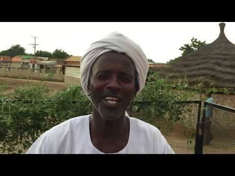 UNDP Links Weather Index Insurance To Microfinance To Combat Climate Change In Sudan