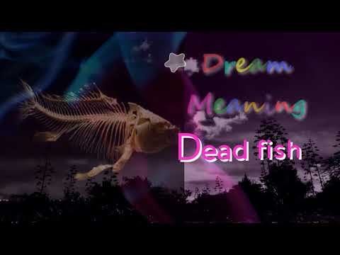 Dreaming Of Dead Fish. & Dream Interpretation. Dream Dictionary
