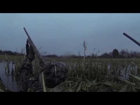 2013 Duck Hunt- Golden Eagle Hunting Club, St. Charles, MO