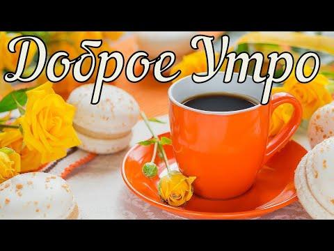 Доброе Утро! Прикольное Пожелание с Добрым Утром и Хорошим Днем! Музыкальная Открытка с Добрым Утром