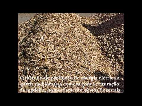 Central De Biomassa Das Terras De Santa Maria