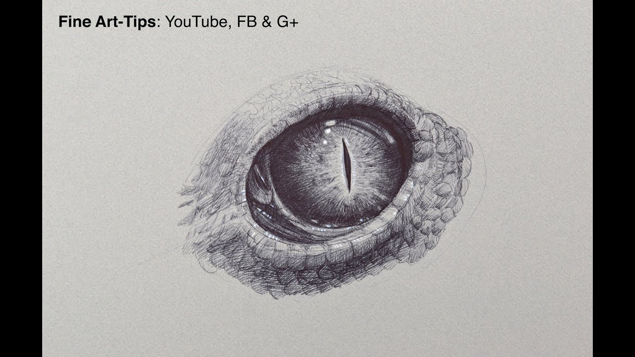 How To Draw A Reptillian Eye With A Ball Point Pen Fine
