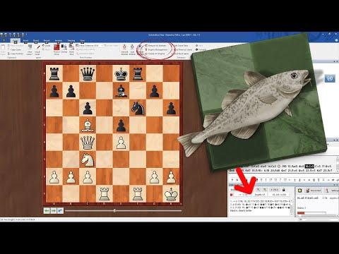 STOCKFISH 11. Где скачать? Как установить? Как анализировать партии с помощью Chessbase и Stockfish?