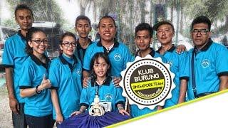 KONTES BURUNG : Indonesian Singapore Shama Team at RONGGOLAWE CUP