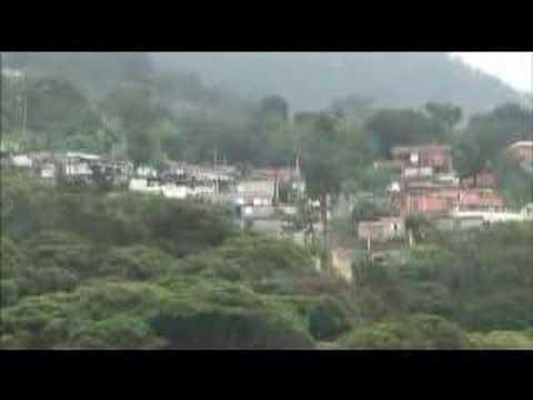 Brazil's Atlantic Forest under threat - 15 Oct 07