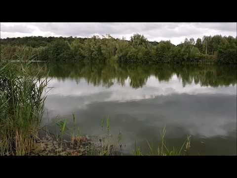 Vue du chalet et du poste 1 dans l'étang de 16 hectares