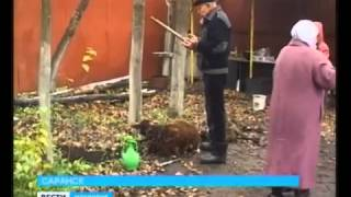 Мусульмане Мордовии отметили Курбан байрам