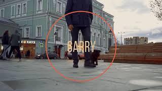Умная собака. Бельгийский (брюссельский) гриффон. Гарри Шторм. Smart dog. Griffon. Видео 6 из 6