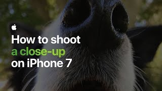 How to shoot a close-up on iPhone 7 — Apple