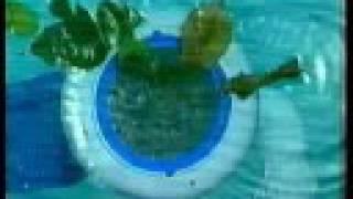 PoolSkim - - Award Winning Automatic Pool Skimmer