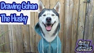 Drawing Gohan The Husky | Congrats on 1Mil & GTH2