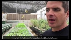 Learn How To Make A Real Profit In Aquaponics