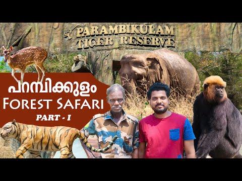 Jungle Safari | Parambikulam Tiger Reserve | Part - I | sherinz Vlog #47