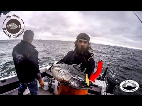 EPIC Morning Of Salmon Fishing Off Pacifica California!!!