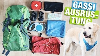 GASSI HUNDE HAUL | Outdoor mit Hund | BACKPACK AMAZON deutsch