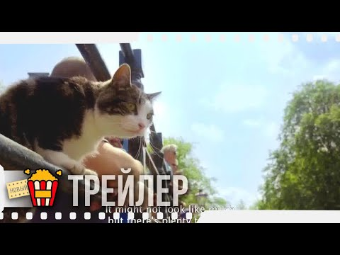 ГОРОД ГЛАЗАМИ КОТА — Русский трейлер | 2018 | Новые трейлеры