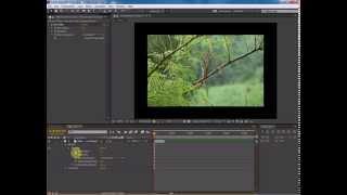 Уроки Adobe After Effects. Эффект двоения изображения. Blur Box