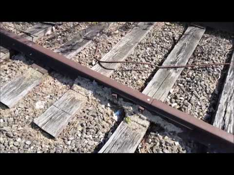 Exploring All Abandoned Railroad Tracks in Carol Stream, IL