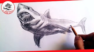 How to draw realistic sharks with pencil, Step by Step and Easy : Drawing the Easy Way