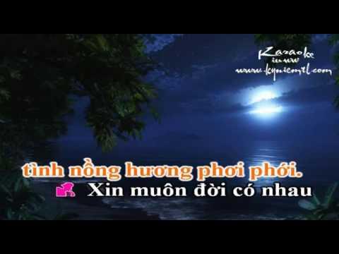 Nhac ; Hen Ho Dem Trang  - Truong Giang
