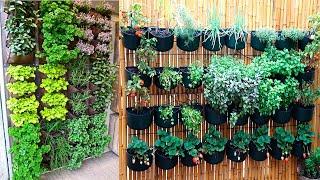 Como Fazer uma Horta Vertical em Vasos de uma Forma Maravilhosa