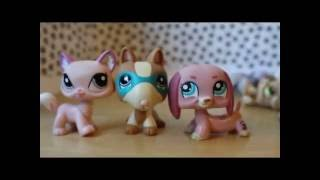 lps prototype unreleased crazy rare htf littlest pet shop new lps 19