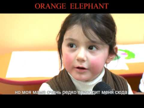 Orange Elephant Armenia Titr