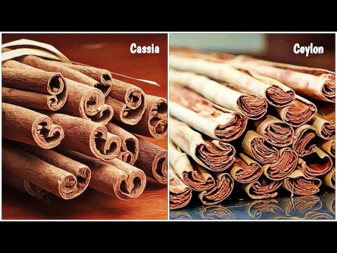 Difference Between Ceylon VS Cassia Cinnamon & Which is Good For You