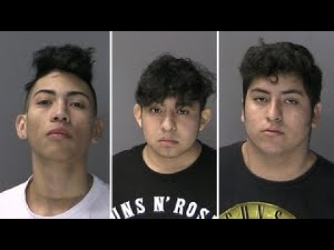 Undocumented MS-13 Members Stab, Attack Long Island Teen, Police Say