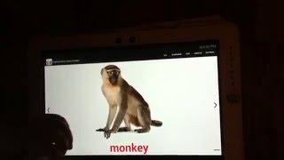 видео Скачать приложение о Обучение и языки