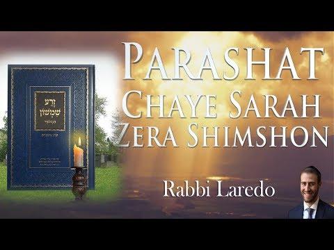 Zera Shimshon - Parashat Chaye Sarah