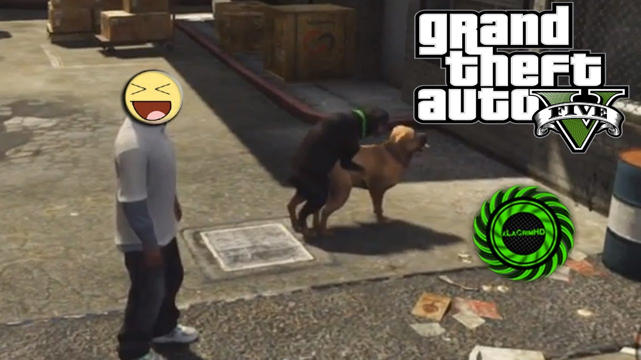 Gta V Dog Sex Video - Youtube-9499