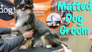 Matted Dog Grooming