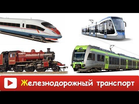 ЗСД (Западный Скоростной Диаметр) Санкт-Петербурга - общая